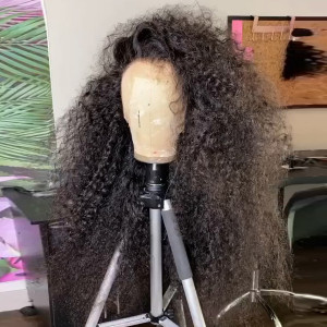 Elva Hair 150 Density 13x6 Brazilian Curly Lace Front Human Hair Wigs Pre Plucked (w479)